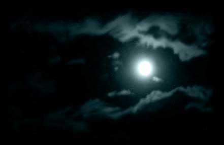 moonlight01.jpg